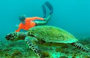 3, Ecotourism Snorkeling Full Day Tour