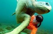 1, Snorkel Ecoturístico