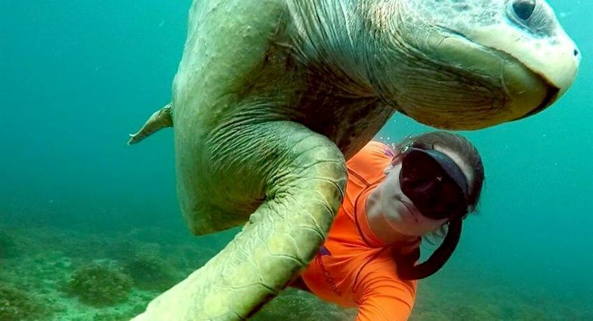 1, Ecotourism Snorkeling Full Day Tour