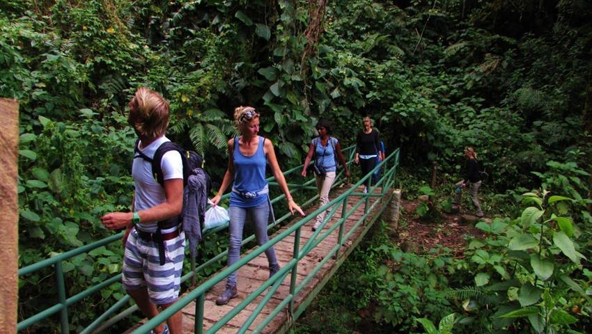 Trekking through hanging bridges - tiqy, Caminata Ambiental