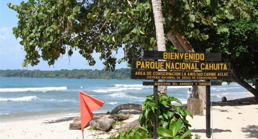 1, Cahuita Snorkeling and Rainforest Hike