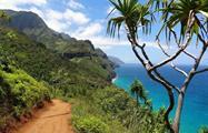 3, Cahuita Snorkeling and Rainforest Hike