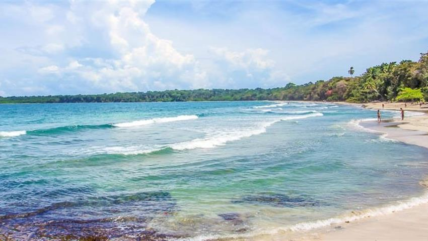 4, Cahuita Snorkeling and Rainforest Hike