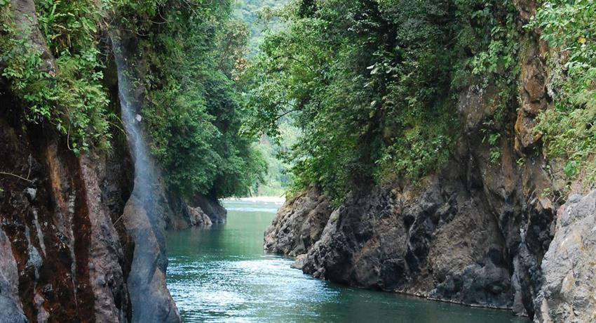 pacuare river view, Pacuare 1-Day Trip