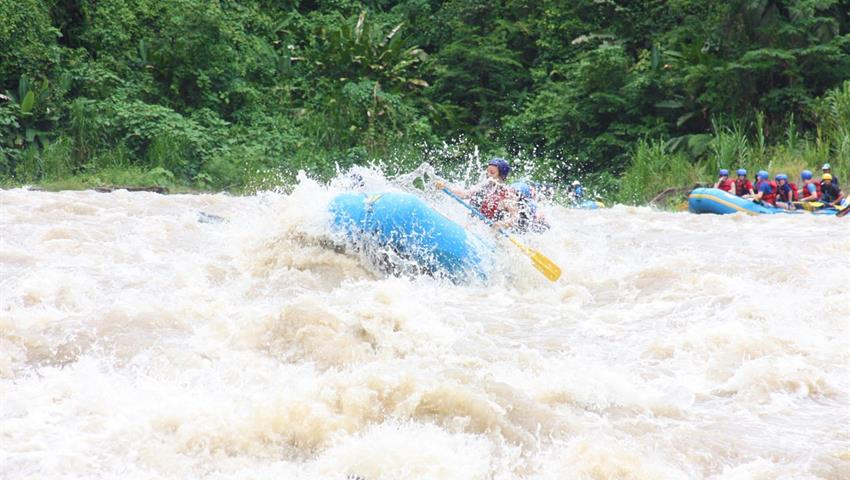 pacuare river rafting rapids, Pacuare 1-Day Trip