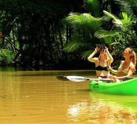 Punta Uva Sea Kayak & Rainforest Hike