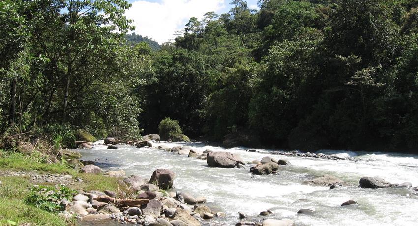 Reventazon river, El Carmen Section