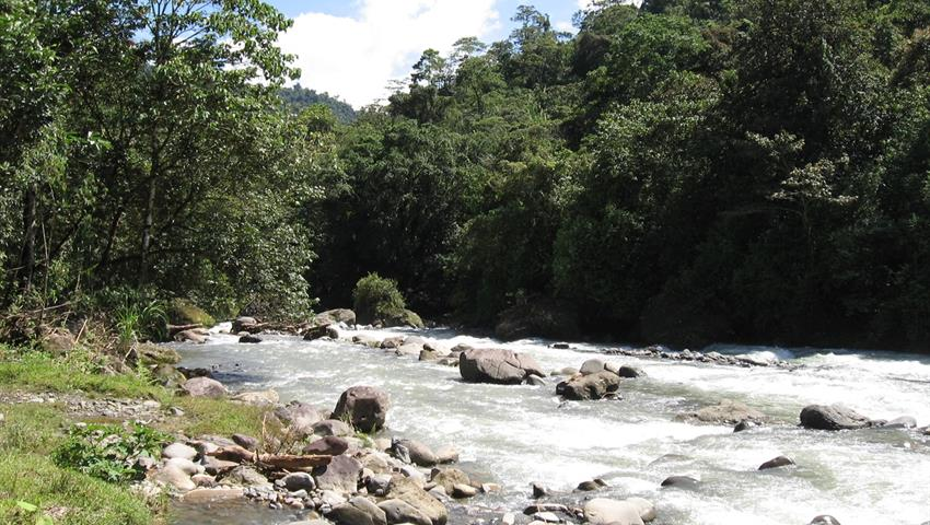 Reventazon river, El Carmen Section