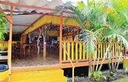 1, 2 Days Tortuguero Expeditions