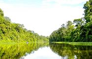 5, 2 Days Tortuguero Expeditions