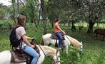 2, Farm Horseback Ride Tour