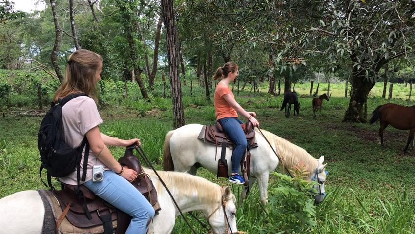 2, Farm Horseback Ride Tour