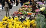 farmers market, Farmers Market & Food Shop Tour