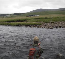 Fish for Trout on the River Swale
