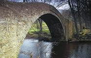 under the bridge - tiqy, Fish for Trout on the River Swale
