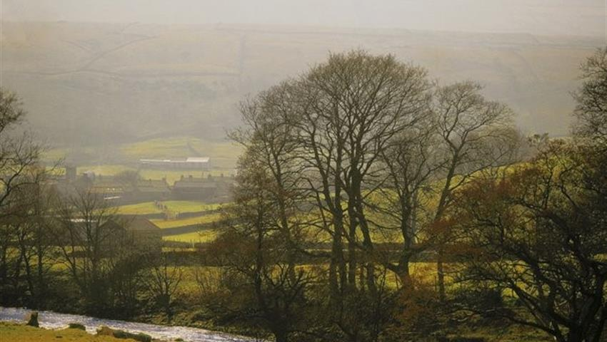 view of Yorkshire - tiqy, Fish for Trout on the River Swale