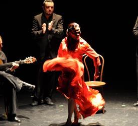 Flamenco y Tour de Tapas de Noche