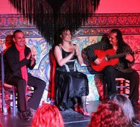 Flamenco and Tapas Tour