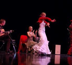 Tapas y Flamenco Show