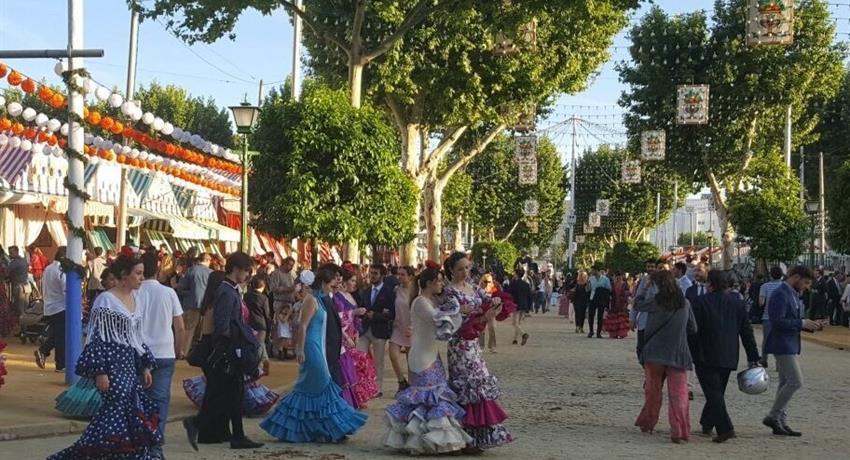 Flamenco Tour, Tour de Flamenco