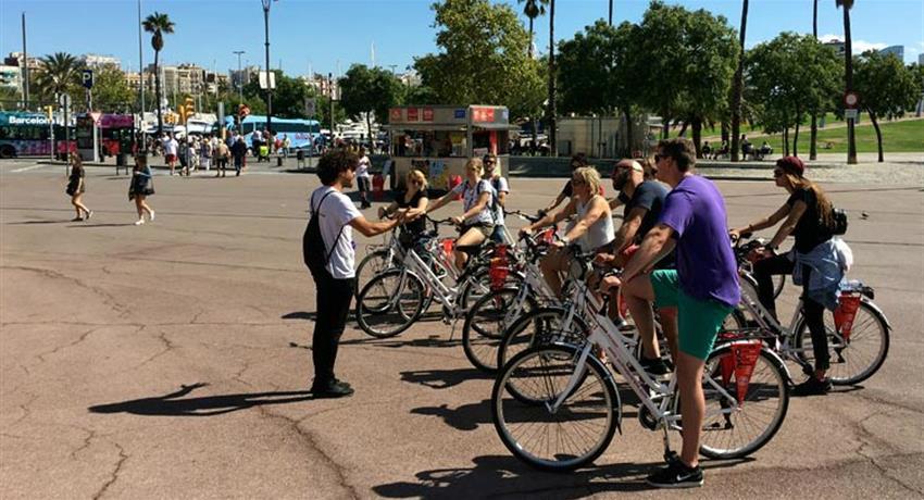 Donkey Tours Bike Tours, Free Bike Tour