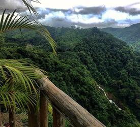 Safari de Día Completo en El Parque Nacional Carara y El Río Tarcoles, Tours De Aventura en Jaco, Costa Rica