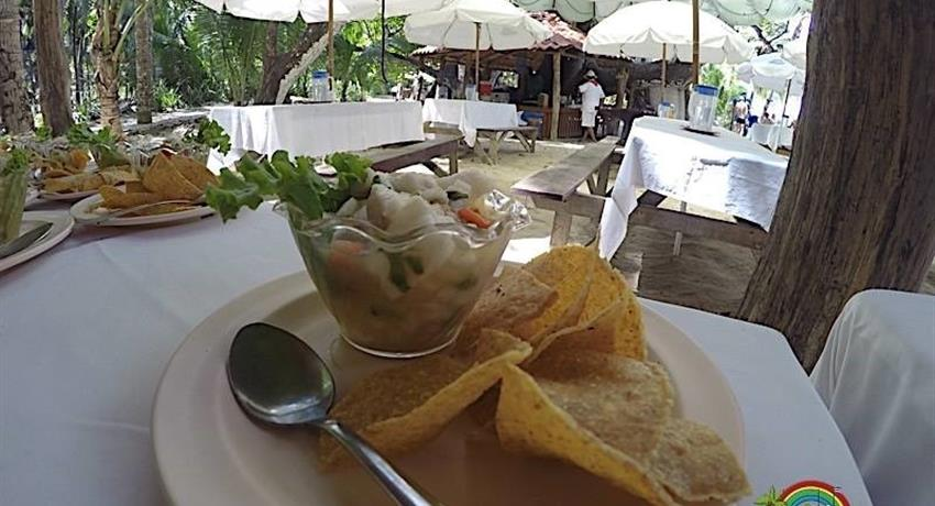 Food, Full Day Tour at Punta Coral
