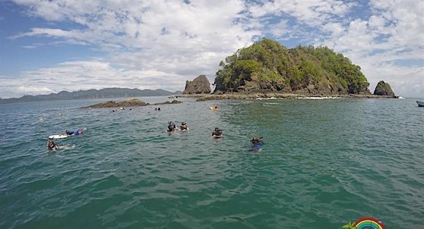 Water, Full Day Tour at Punta Coral