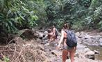 El mono, Full Day Tour from Panama City to the Embera Village