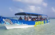 San Blas 5, Full Day Tour to 4 San Blas Islands with Snorkel, Kayak and Paddle Board