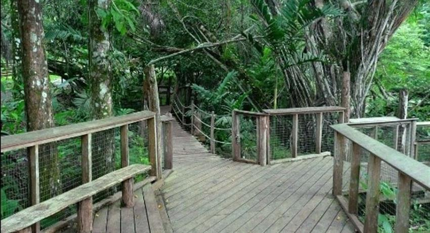Day Tour in the Emberá Community, Charco and Zoo, Full Day Tour to the Emberá Community, The Charco Trail and Zoo