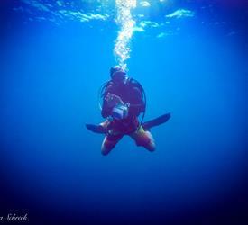 Fun Dive in Coiba National Park