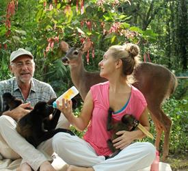Animal Rescue Centre, Chocolate Lady and Waterfall Tour