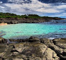 Full Day Iguana Island Tour