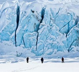 Glacier Discovery Tour, Glacier Tours in United States