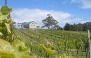 Bruny Island Travellers winery, Gourmet Experience on Bruny Island