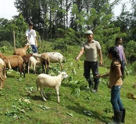 Agrotourism Daypass