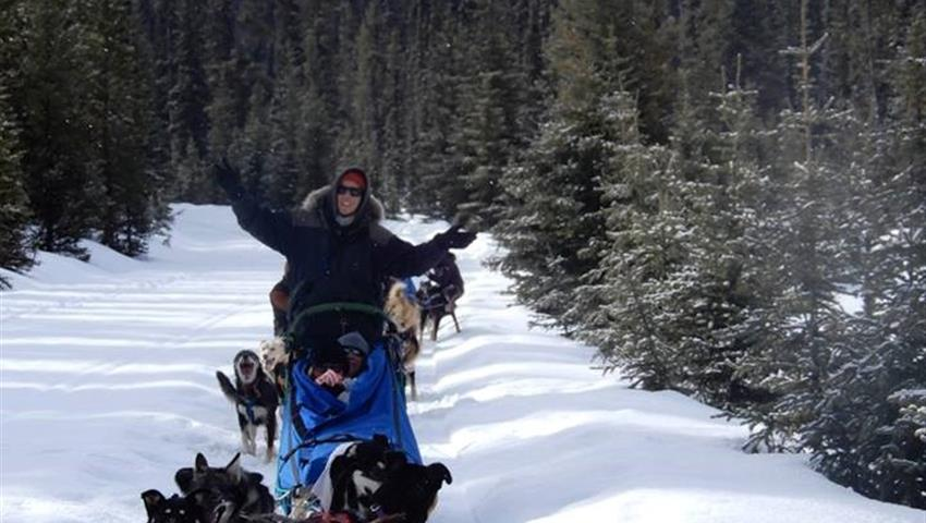 Amazing Experience, Great Divide Dog Sled Tour