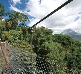 Arenal Hanging Bridges and Baldi Hot Springs - Private Tour, Volcanoes Tours in Costa Rica
