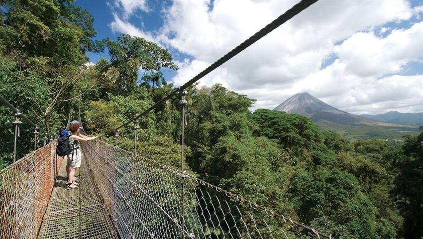 1, Arenal Hanging Bridges and Baldi Hot Springs - Private Tour