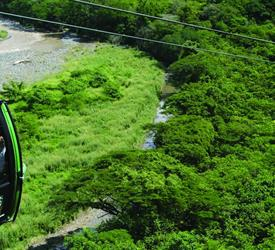 Rain Forest Aerial Tram - Private Tour
