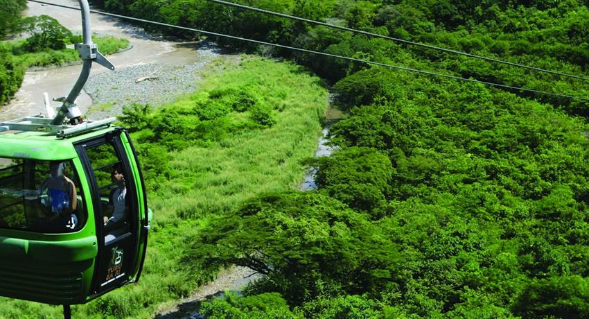1, Rain Forest Aerial Tram - Private Tour