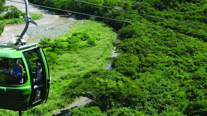 1, Rain Forest Aerial Tram - Private Tour