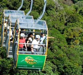 Rainforest Cultural Experience in Aereal Tram - Private Tour