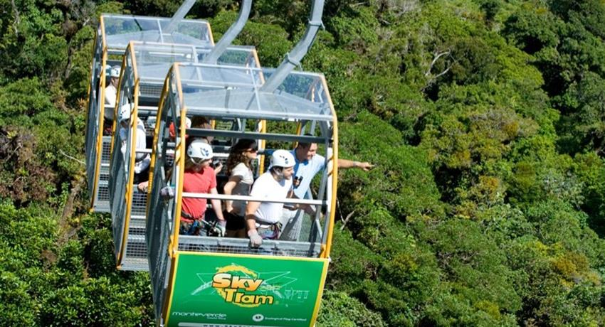 1, Rainforest Cultural Experience in Aereal Tram - Private Tour