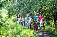 Horses, Guanacaste Horseback Riding 6 Hour Tour