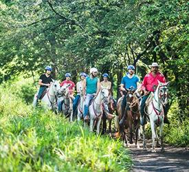 Guanacaste Horseback Riding 6 Hour Tour