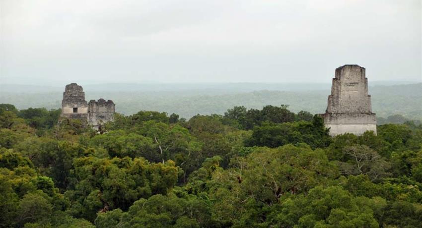 1, Tikal Tour