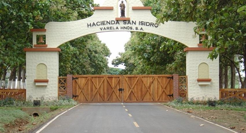 Hacienda San isidro, Guided Tour to The Route of Rum
