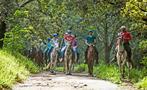 Horses, Hacienda Guachipelin Full Day Adventure